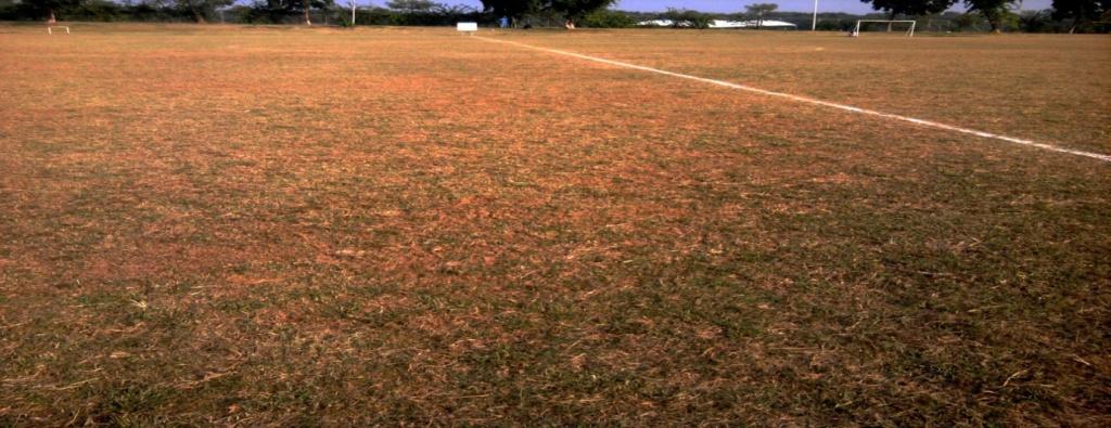 ppfl ground